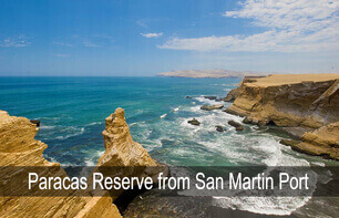 paracas reserve from san martin port