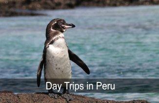 day trips in peru