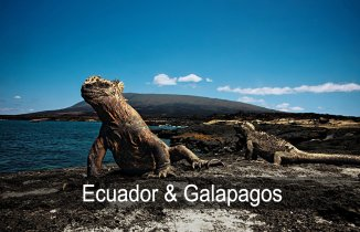 holidays to ecuador and galapagos