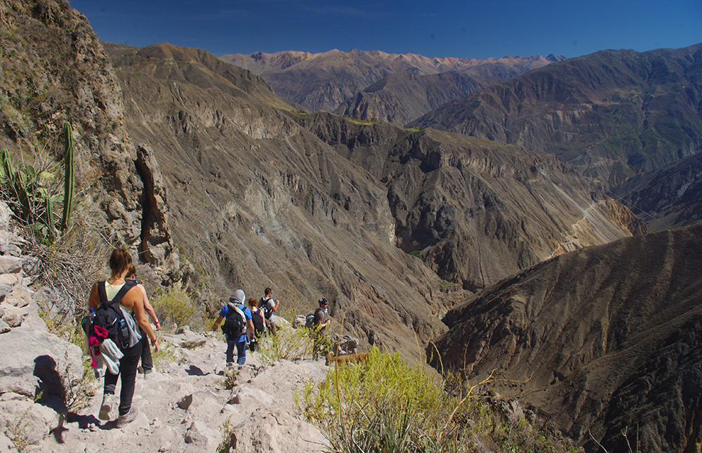 Tour Colca Canyon Trek - LAS ADVENTURE